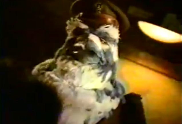 1997_Nissan_pigeons